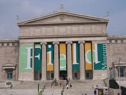 STEM Education Specialist: Field Museum (1-year appointment)