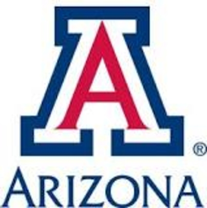 Assistant Professor:  eSociety Program, University of Arizona