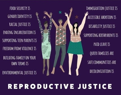 "CFP: Reflections Special Issue ""Rhetorics of Reproductive Justice in Public and Civic Contexts"""