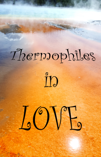 Thermophiles in Love netprov