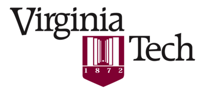 Tenure-track Assistant Professor in Interactive Computing, Virginia Tech
