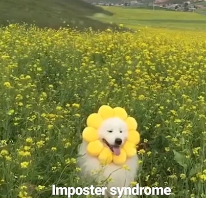 image of dog in a field of flowers trying to blend in with a flower mask on
