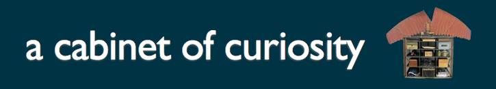 Poster Session 1: Curiosity Project