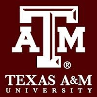Professor in Digital Humanities, Media, and Culture, Texas A&M