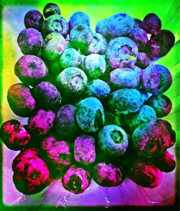 Blueberries from the Neon Farm