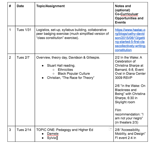 Collaborative syllabus designed by graduate students (Google Docs)